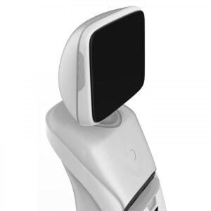 Intelligent telepresence Robot SIFROBOT-2.0