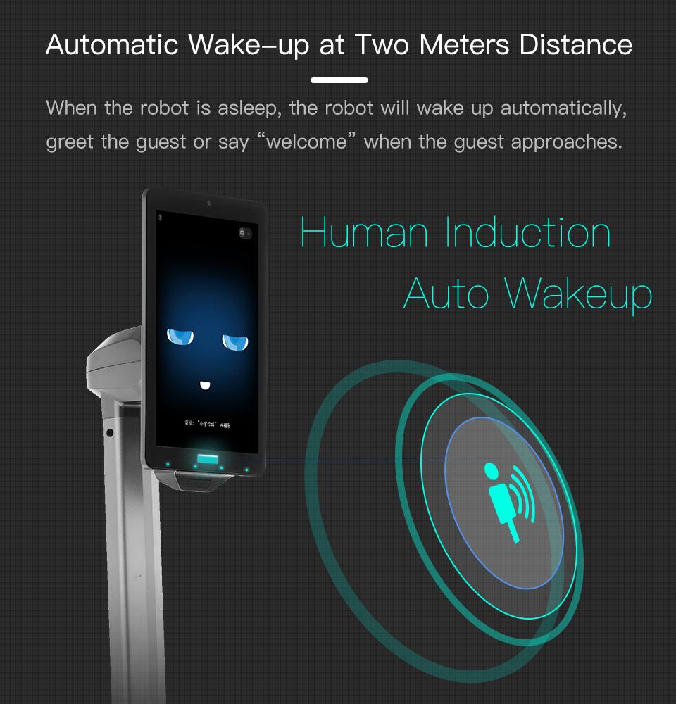 SIFROBOT-4.1 auto-wake