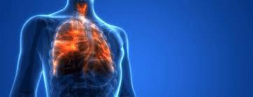 lung-coronavirus
