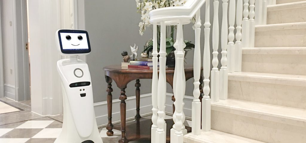 Intelligent telepresence Robot SIFROBOT-1.0 Overview